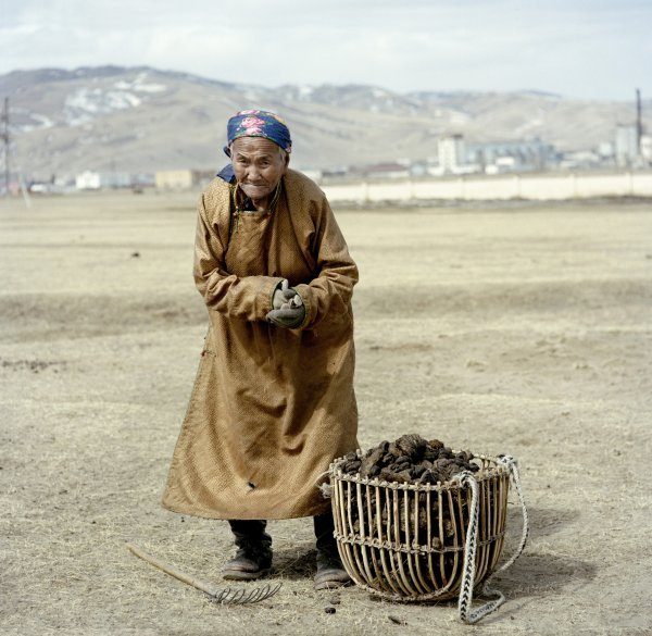 A women collects sun-dried animal droppings. These are used to fuel the stove, located in the centre of the yurt, which provides heats both for the home and for cooking. In the city, the main fuel source is coal.   Karakorum, March 2011.